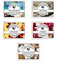 Sunny Beaches Variety Mix 5 Pack Scented Soy Wax Warmer Cube Melts 100% All Natural American Farm Raised Soy Wax…