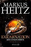 Exkarnation - Seelensterben: Thriller