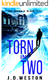 Torn in Two: A Twisted Frankie Black Crime Thriller (The Frankie Black Files Book 1)