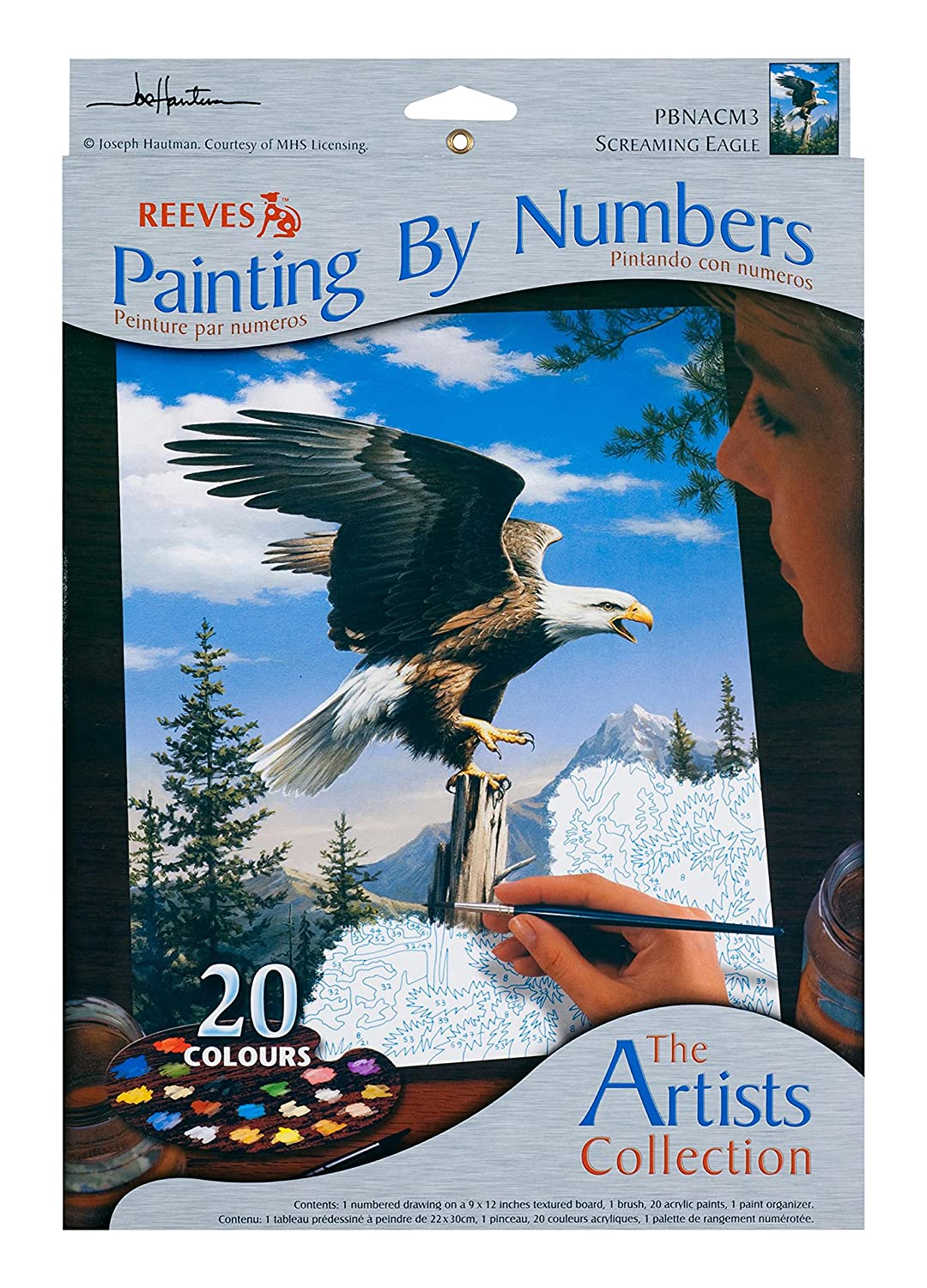 Reeves 9-Inch by 12-Inch Paint by Number Artists Collection Ripples PBNACM-2