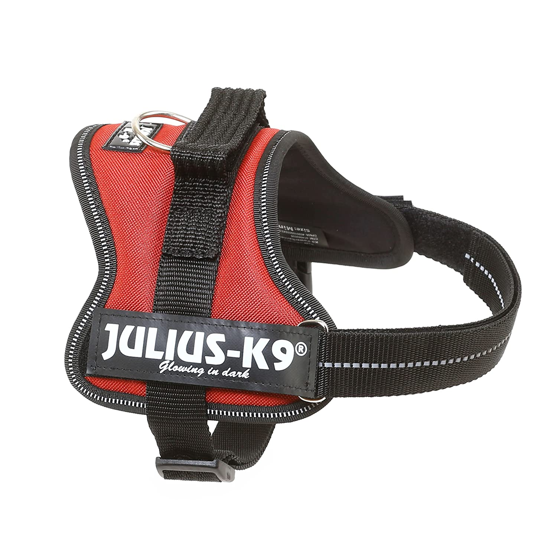 Julius-K9 162BOR-M Power Harness, Tamaño Mini, Burdeos Marrón ...