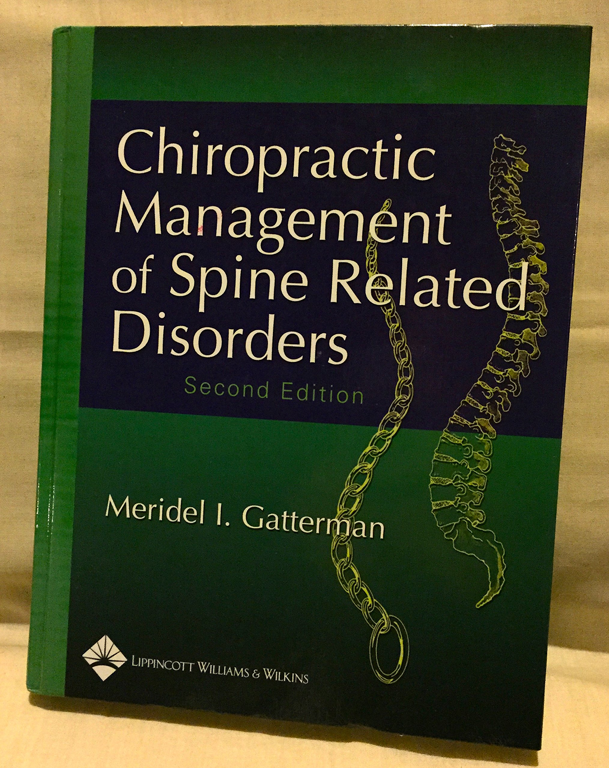 Download Chiropractic Management of Spine Related Disorders ebook