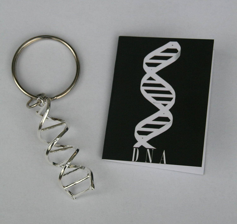 Amazon.com: ADN Helix Ciencia clave Cadena: Industrial ...