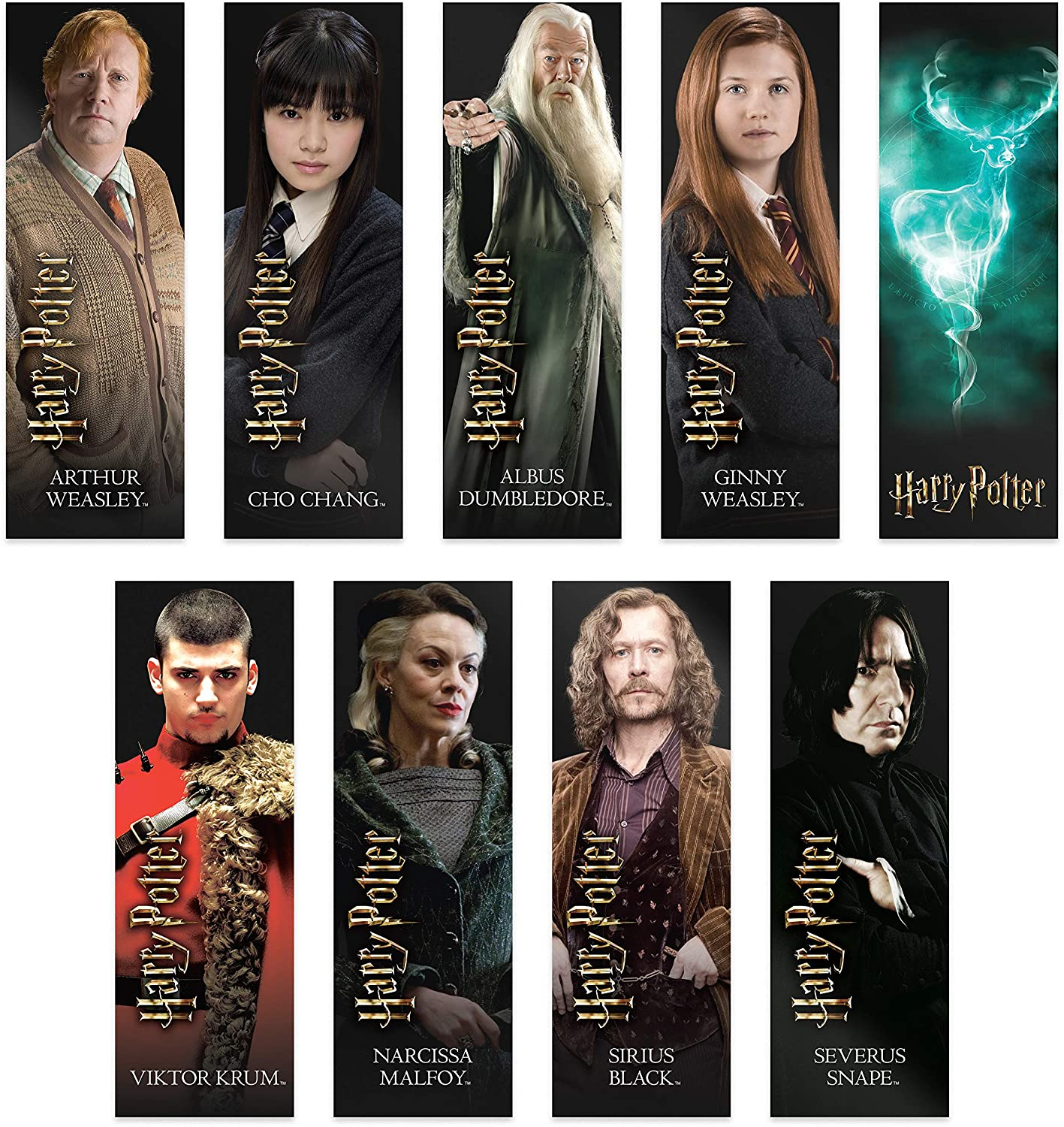 Series 2 Wizarding World Harry Potter Mystery Wand; Contains 1 of 9 Random Styles for Unboxing
