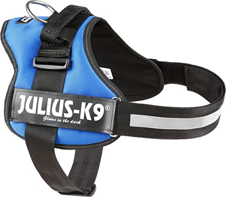 Julius-K9, Talla 1, 66-85 cm, Azul: Amazon.es: Productos para mascotas