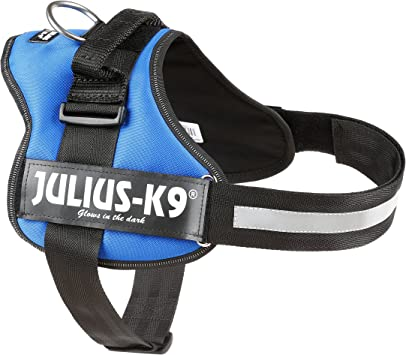 Julius-K9, Talla 1, 66-85 cm, Azul: Amazon.es: Productos para ...