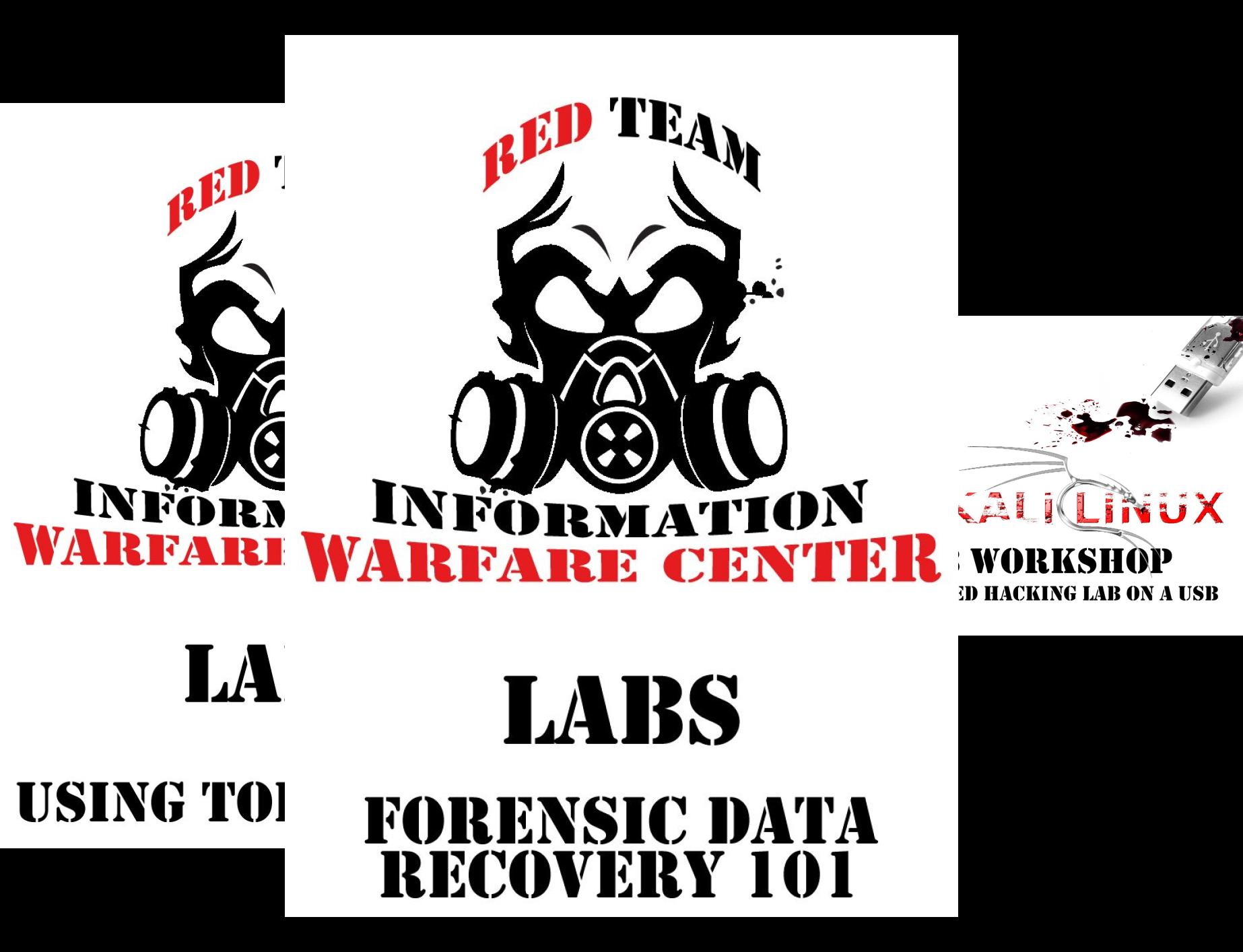 Cyber Secrets Labs (3 Book Series)