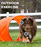 Outward Hound ZipZoom Outdoor Dog Agility