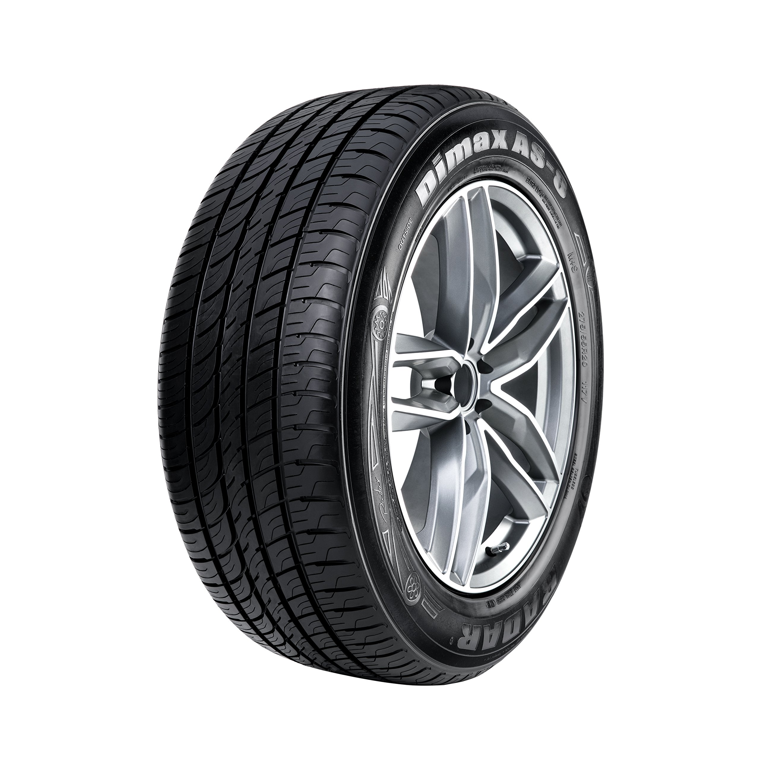Radar Tires Dimax AS-8 Touring Radial Tire - 205/55R16 91V by Radar Tires