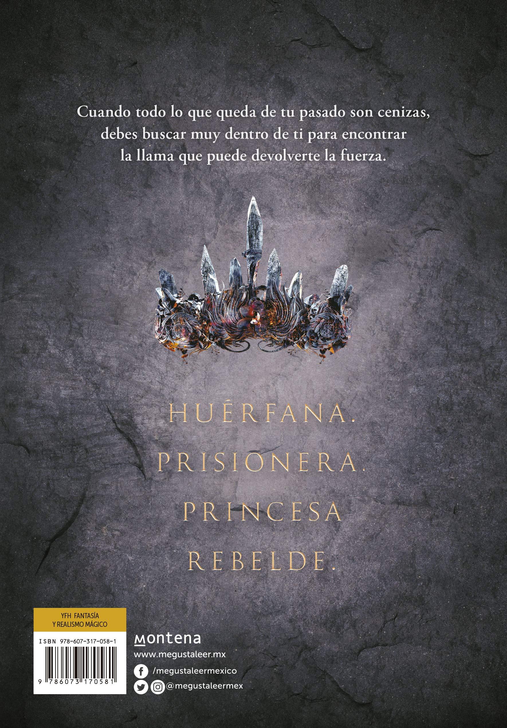 Resultado de imagen de reseña libro princesa de cenizas