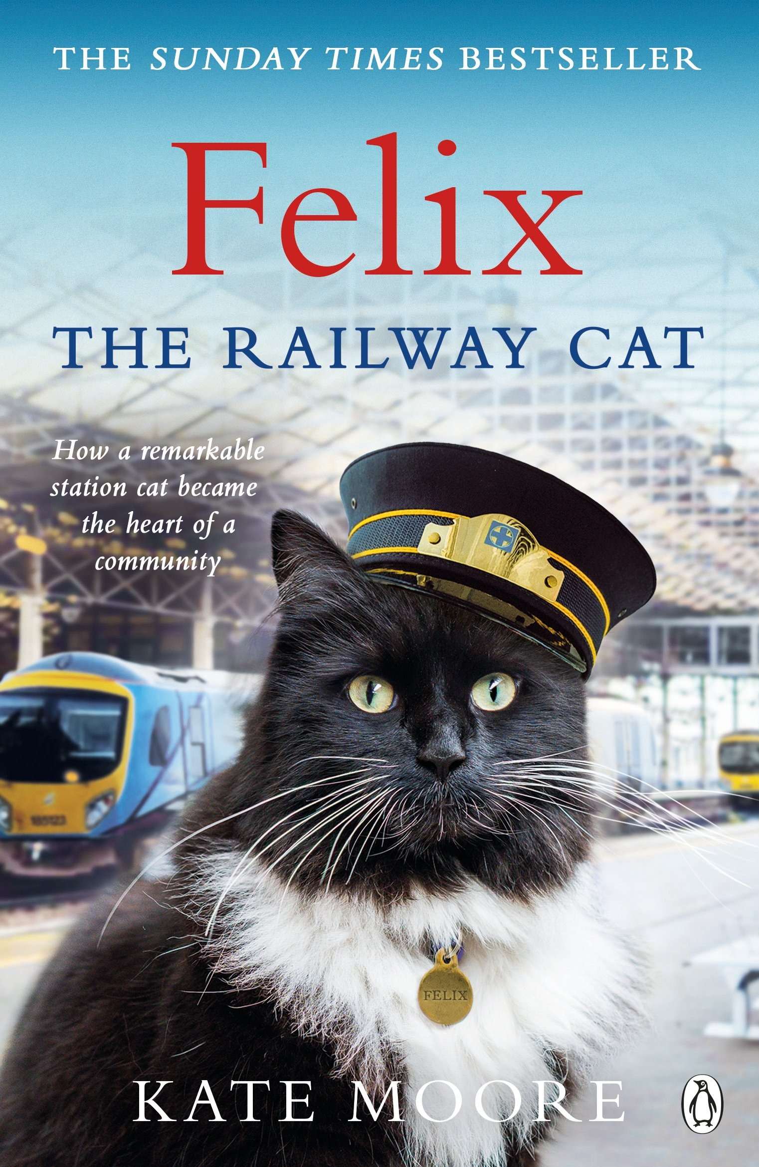 Felix The Railway Cat  English Edition