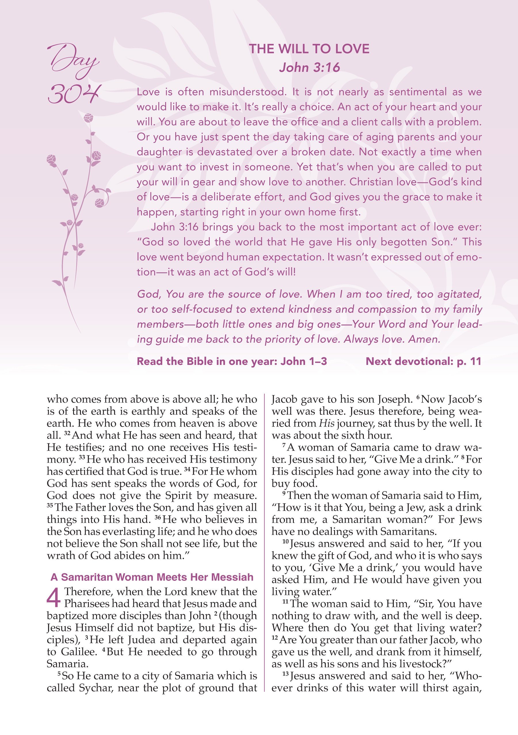 NKJV, A Woman After God\'s Own Heart Devotional Bible, SatinTone ...