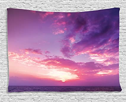 Amazon.com: Ambesonne Apartment Decor Collection, Sunset Pink Sky ...