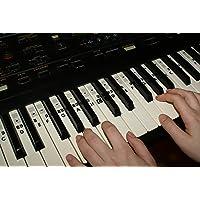 Piano Klavier Keyboard Noten Aufkleber Stickers C-D-E-F-G-A-H + neue Version der Aufkleber kostenlos