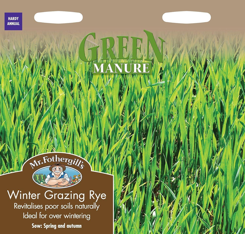 Mr. Fothergill's 12828 Manure Winter Grazing Rye Seeds - Green Mr Fothergill?s Seeds Ltd
