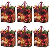 Earthwise Reusable Grocery Shopping Bags Extremely Durable Multi Use Large Stylish Fun Foldable Water-Resistant Totes…