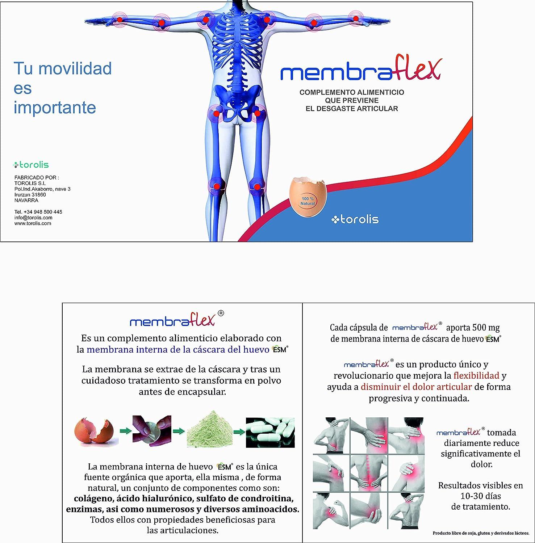 500mg de Membrana de huevo por cápsula.Contiene: COLÁGENO + ÁCIDO HIALURÓNICO + CONDROITINA + otros). Regenerador articular, mejora la flexibilidad y reduce ...