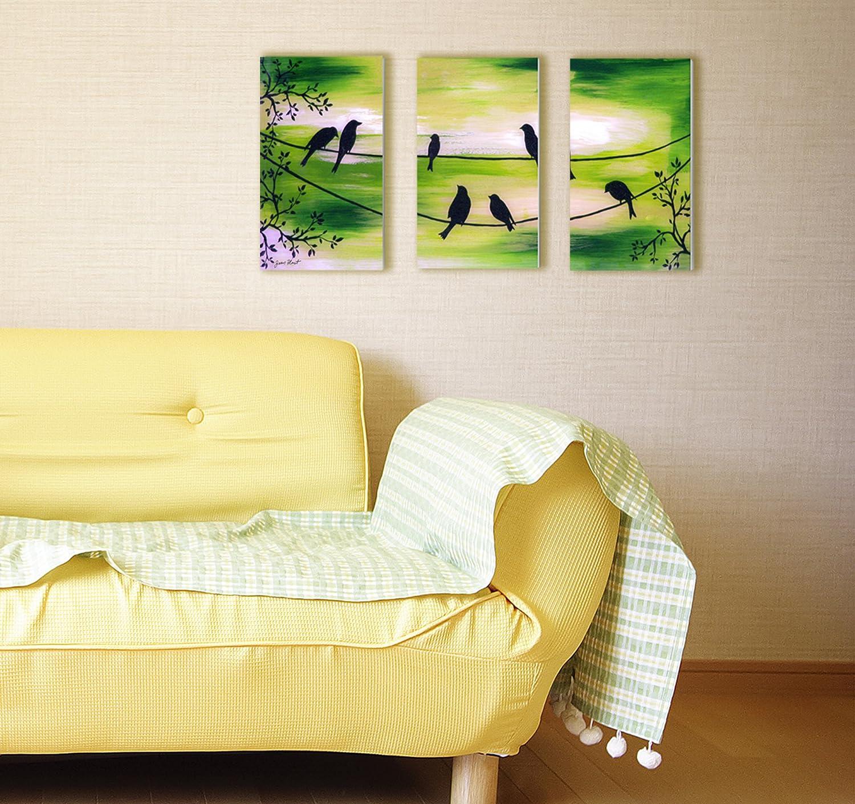 Amazon.com: Stupell Home Décor Song Bird Trio 3-Piece Triptych Wall ...