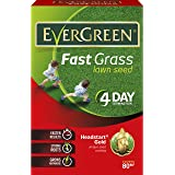 EverGreen 2.4 kg Fast Grass Lawn Seed Carton