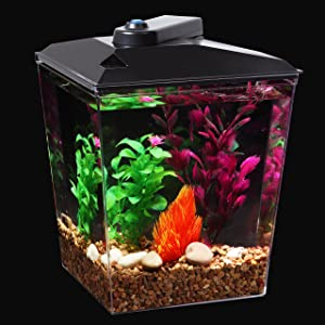 Koller Products Aquaview 6-Gallon 360 Fish Tank Review