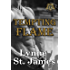 Tempting Flame (Raining Chaos Book 3)