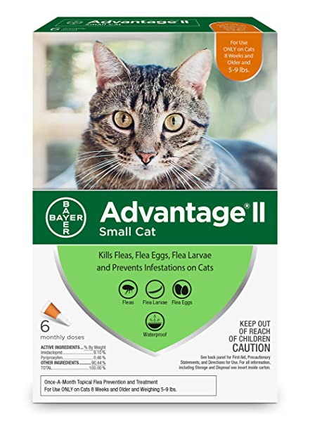 Bayer advantage 2 for cats reviews