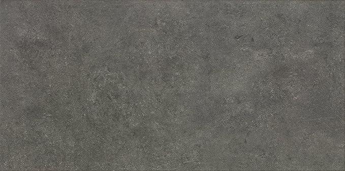 Mercury Bodenfliese 30x60,4 cm Feinsteinzeug Fliese in Steinoptik Musterfliese 1 St/ück