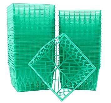Juego de 4 pulgadas de plástico Cajas de Berry, una pinta Berry Cestas con patrón de Open-weave, ideal para verano de recoger. (48 unidades): Amazon.es: ...
