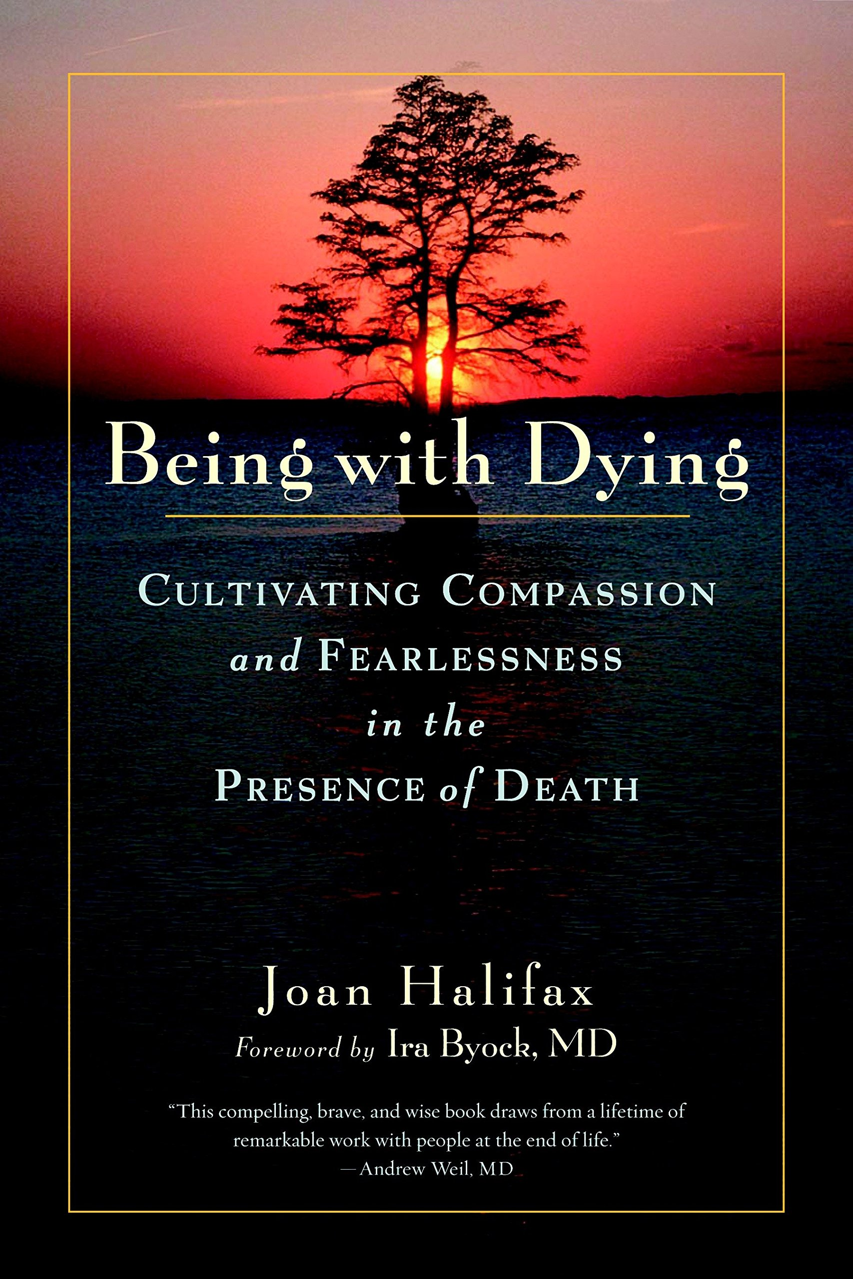 Being Dying Cultivating Compassion Fearlessness product image