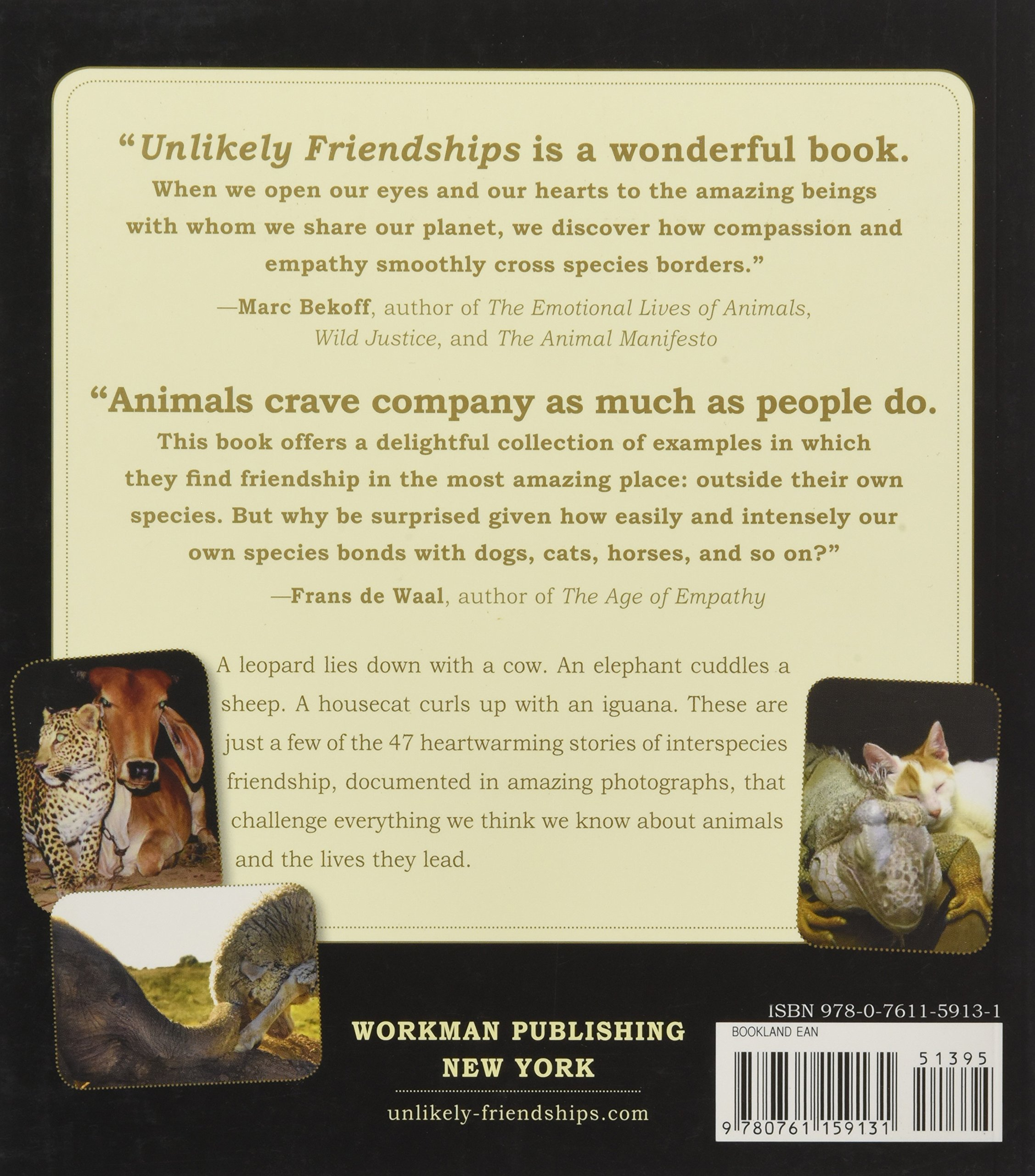 Unlikely Friendships 47 Remarkable Stories From The Animal Kingdom Jennifer S Holland 9780761159131 Amazon Books