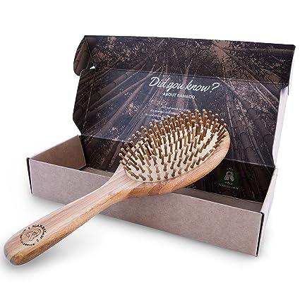 Bambú Cepillo de pelo en paquete ecológico, naturales entwirrungs Cepillo para todos los tipos de