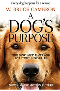 autobiography of a dog for class 7