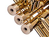 Trumpet Trim Kit for improving the sound. for