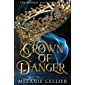 Crown of Danger (The Hidden Mage Book 2)
