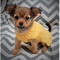 Shamrock Hand knitted 4 inch long Teacup Chihuahua puppy kitten sweater jumper St Patricks day