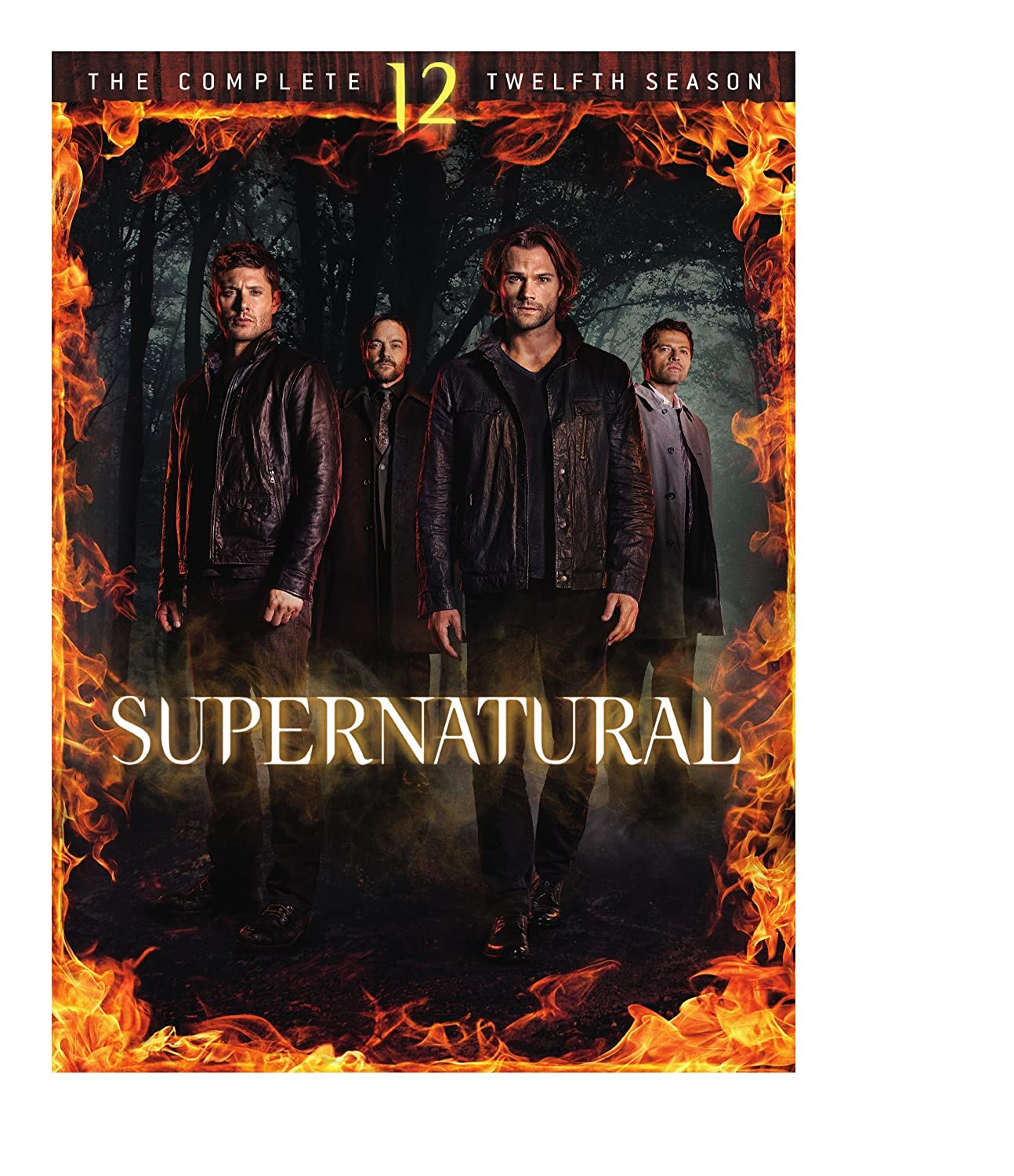 Supernatural: S12 (DVD)