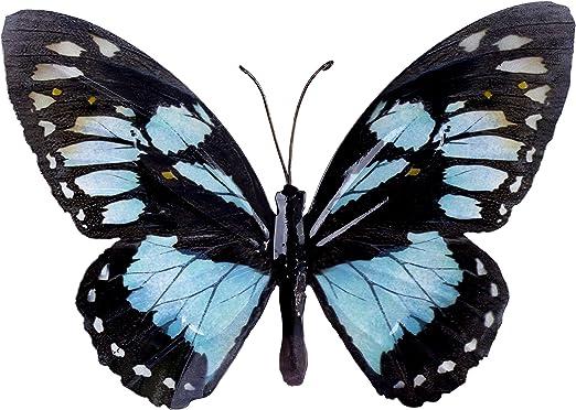 Décoration murale en forme de papillon en métal - Couleur vive - Pour le jardin - 5 coloris disponibles Black & Light Blue: Amazon.es: Jardín