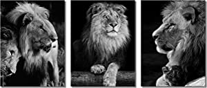 African Animals Black and White Lion Decor Contemporary Canvas Wall Art Decorations for Living Room Office Bedroom Decor(12