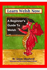 Learn Welsh Now: A Beginner's Guide to Welsh