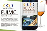 Water Extracted Fulvic Acid X350 - Concentrated