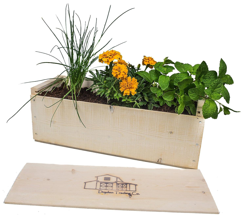 Indoor Herb Garden Planter Box Kit with Basil, Cilantro, Oregano,