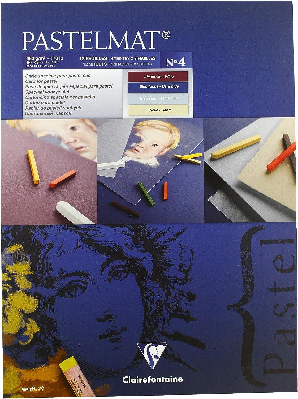 360 g Clairefontaine 30 x 40 cm PastelMat Pastel Card Pad No5 12 Sheets,