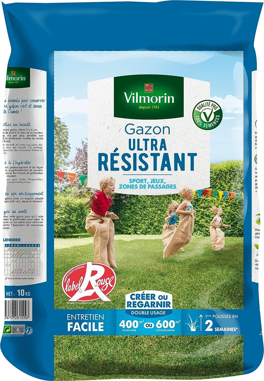 Semences de gazon Graines de Berlin 10 kg jeu pelouse sportif ultra résistant