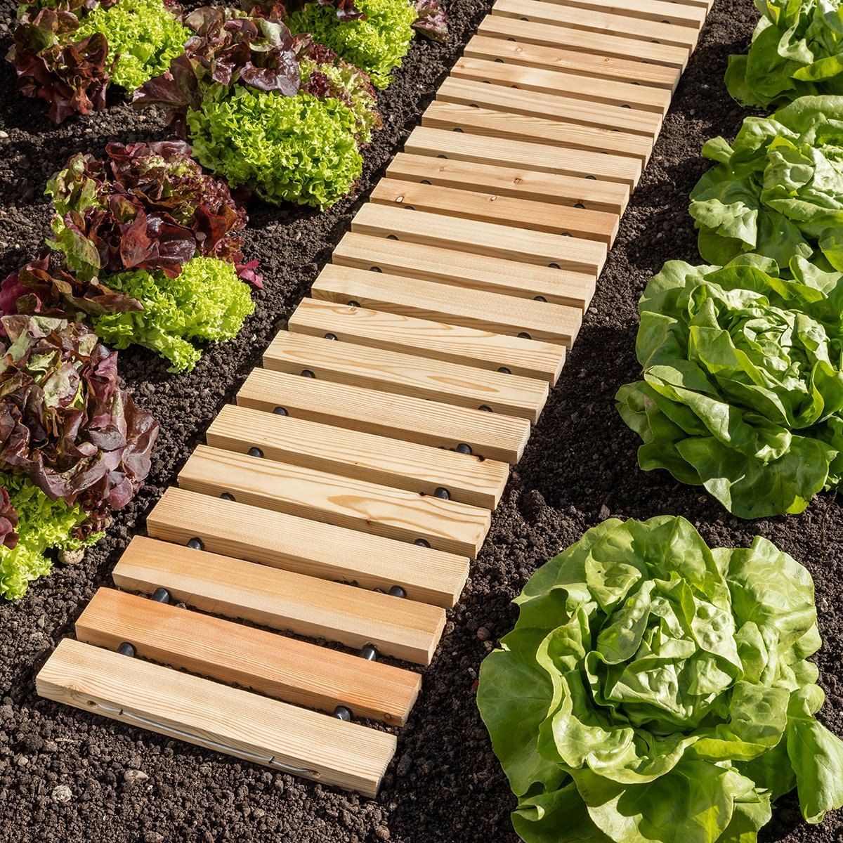 Garten anlegen 8 Tipps & Tricks