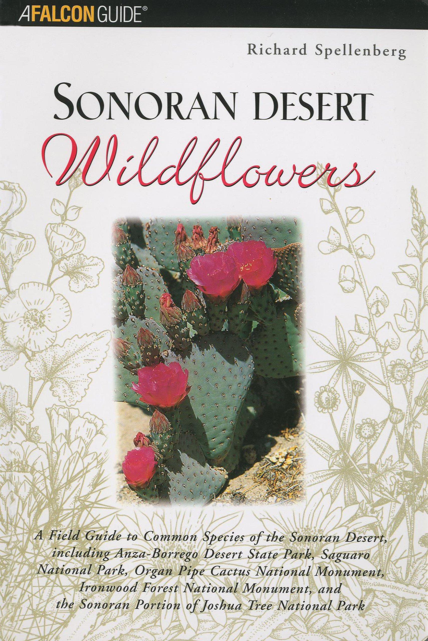 Sonoran Desert Wildflowers: A Field Guide to the Common Wildflowers of the Sonoran Desert, Including Anza-Borrego Desert State Park, Saguaro National ... Joshua Tree National Park (Wildflower Series) ebook