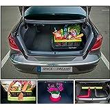 Gepäckfixierung SPACEFIX® (Schwarz) - Original, praktisch, Befestigungselement in den Kofferraum Ihres Autos. Superqualität! Große 6 x 6 x 100cm. Perfektes Geschenk für Sie und ihn! Mit starkem Klettverschluss, der auf der Teppichverkleidung im Kofferraum klebt und ihr Gepäck im Kofferraum fixiert. Für eine ideale Fixierung des Gepäcks in dem Kofferraum Ihres Wagens empfehlen wir üblicherweise 2 Stk. von SPACEFIX® zu nutzen.