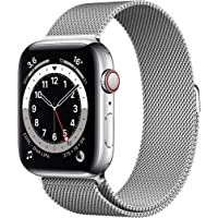 Apple M09E3FD/A Apple Watch Series 6, Smartklocka, Silver, 44mm