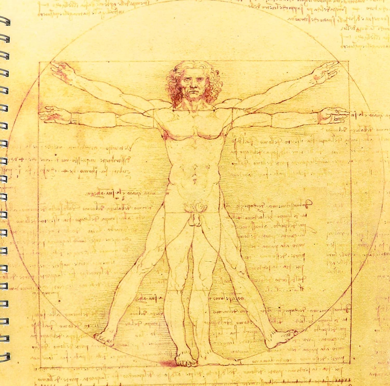 Amazon 3drose Db1556332 Vitruvian Man By Leonardo Da Vinci