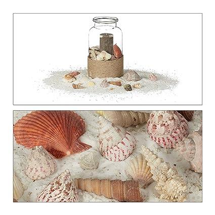 Relaxdays Pack de Conchas Marinas Verdaderas Pequeño de Decoración o Manualidades, Caracolas, 15x15x10 cm: Amazon.es: Hogar