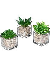 Small Glass Cube Artificial Plant Modern Home Decor / Faux Succulent Planter Pots, Set of 3 - MyGift